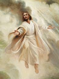 "November 4–10. Hebrews 1–6: ""Jesus Christ, 'the Author of Eternal  Salvation'"" | Jesus christ art, Jesus painting, Jesus christ images"